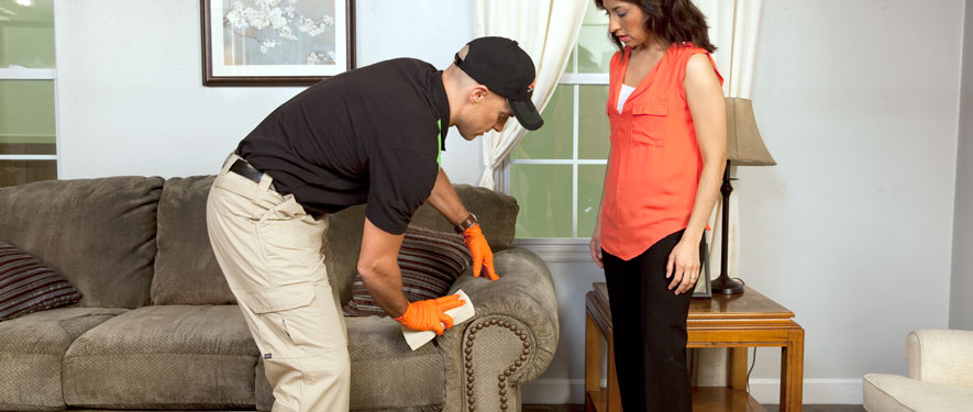 Valparaiso, IN carpet upholstery cleaning